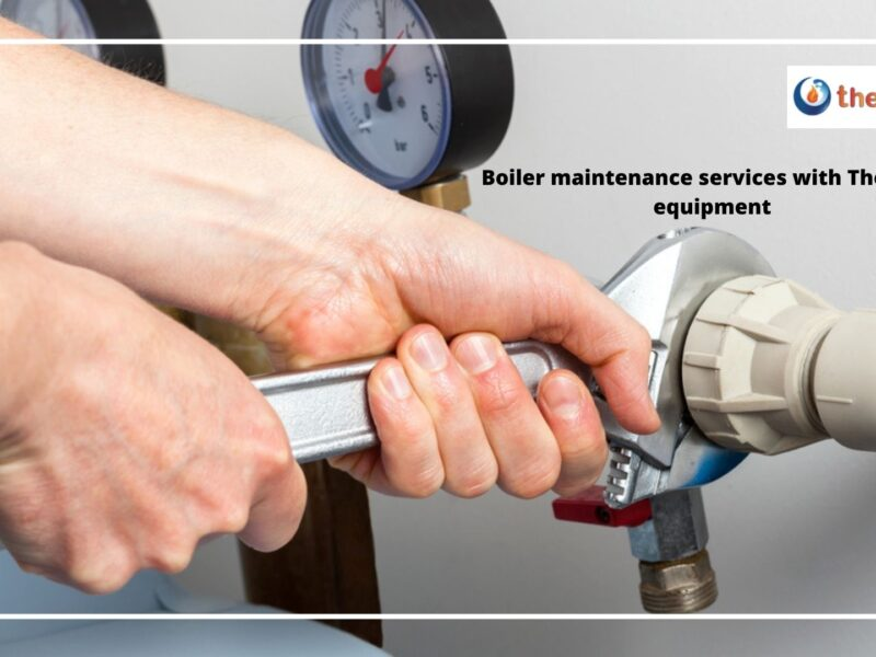 Boiler maintenance services with Thermea equipment